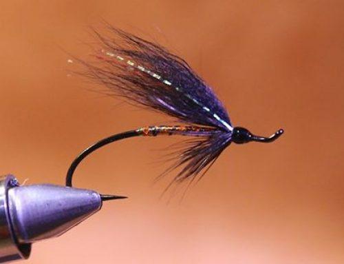 Fiskiflugan